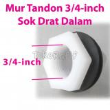 Mur Tandon 3/4-inch-Female