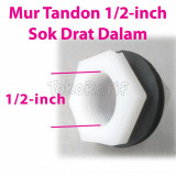 Mur Tandon 1/2-inch-Female